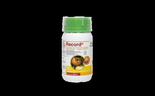 Record 250